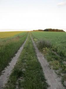 Nine_Wells_Track